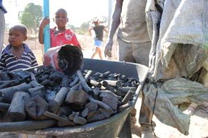 haiti charcoal kids